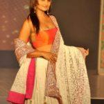 Lahnga Choli